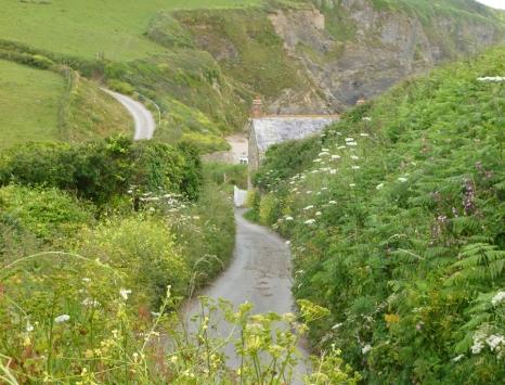 Cornish lane HP