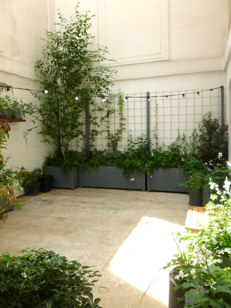 Paris Courtyard Garden